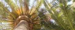 Nuevo RD 1311/2012